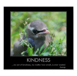 ... quotes tags i miss you quotes kindness baby bird motivational poster