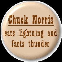 Chuck Norris Eats Lightning And Farts Thunder