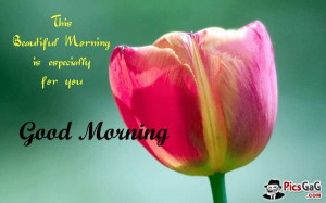 ... good day quotes to say good morning to friends, family and love ones