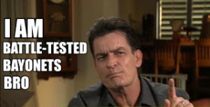 ... at the faster times charlie sheen s craziest quotes get lolcat ified
