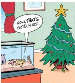 Funny christmas star cartoon