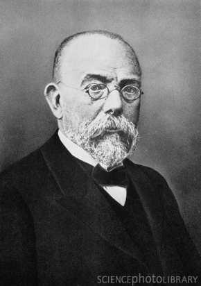 造訪原始網頁: Who is Robert Koch? | Robert Koch StarNoStar ...