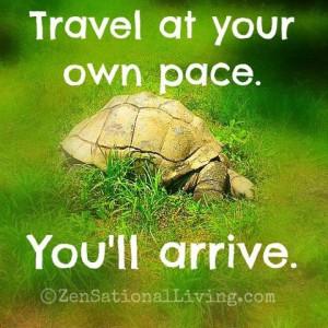 Turtle quote on Travel...