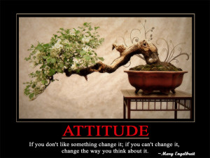 Attitude If you don't like something change it; if you can't change it ...