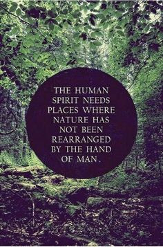 The human spirit needs places where nature has not been rearranged by ...
