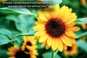flower cannot blossom without sunshine