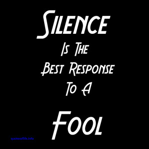 Silence Is The Best Response To A Fool ~ Attitude Quote