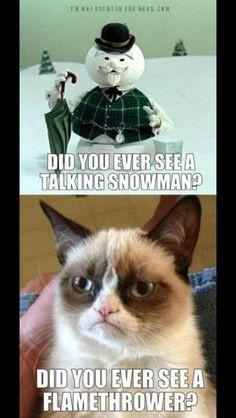 Grumpy Cat Meme Funny For...