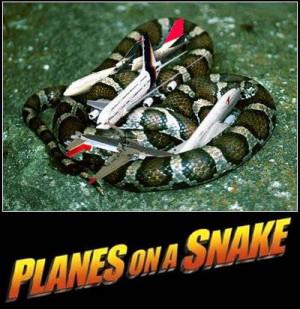 Funny Snake (46)