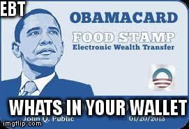 funny radiology sayings guinea pig memes food stamp memes obama food ...