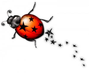 Ladybugs may be sweet but they're the rockstars of the bug world...