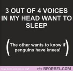 Funny Insomnia Quotes | Funny Voices in My Head Quotes