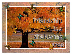 Is Friendship a Sheltering Tree