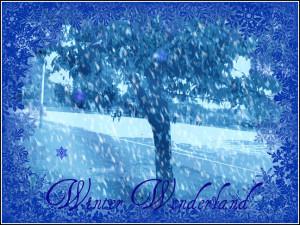 Let-it-snow-snow-12870421-648-488.jpg