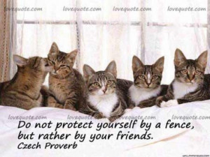 Fabulous Friendship Quotes and Sayings