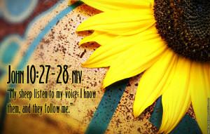 Bible Verses John 10:27 Flower Scripture HD Wallpaper
