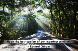 Hope, the best comfort of our imperfect condition.