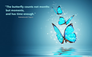 Butterfly Images With Quotes Butterfly counts quotes