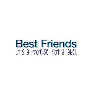 Source: http://www.polyvore.com/best_friend_quote_clipped_ken/thing ...