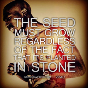 The Seed Must Grow 2pac Quote Graphic
