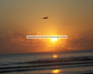 Nature, Sunrise, Beach, INSTANT UPLOAD Now, Bird, Ocean, Daytona Beach ...