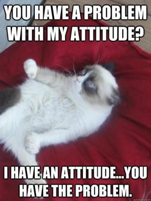 Attitude problem grumpy cat http://www.slapcaption.com/attit... on ...