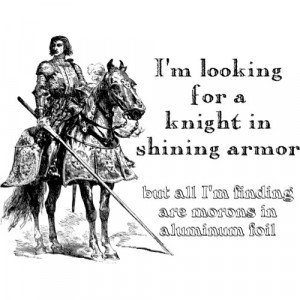 Knight In Shining Armor Funny Shirt by FunnyBusiness