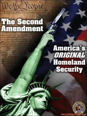 Second Amendment Quote/Second Amendment Poster