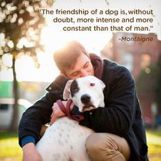 ... more boxer puppy quotes dog friendship quotes dogs quotes true