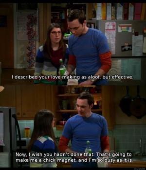 Big Bang Theory Sheldon and Amy15