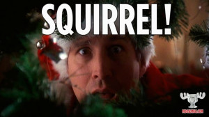 Squirrel! - Christmas Vacation quote, classic movie