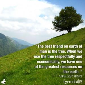 Frank Lloyd Wright #sustainability #quotes - Formabilio.com, the eco ...