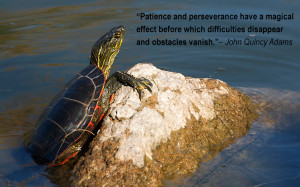 ... Adams Quotes Patience And Perseverance John Quincy Adams Quote Image