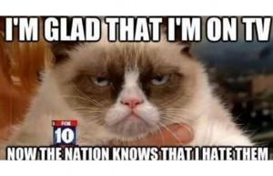 Grumpy Cat Meme What People