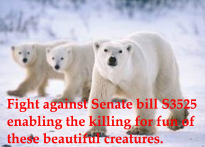 urge the site's visitors to email the Senate of the United States ...