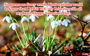 valentine day love quotes for husband | valentines day love quotes for ...