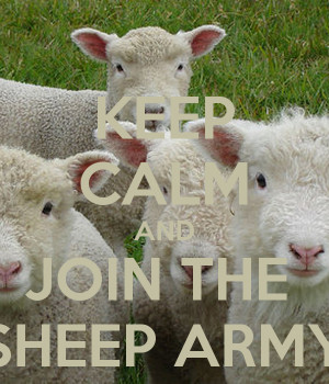 Keep Calm And Join The Sheep Army Carry Image