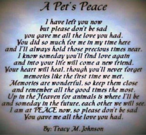 pets dying inspirational quotes quotesgram