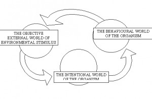 About 'Social learning theory'