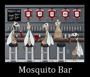 Mosquito Bar..