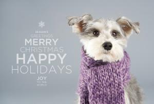 dog happy holidays dog id tag happy holidays from nylabone happy ...