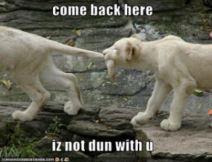 funny lion quotes,funny lion sayings life,funny lion good quotes,funny ...