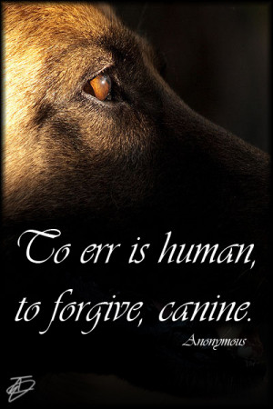 Dog Quote Posters