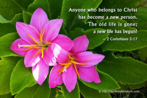 ... . The old life is gone; a new life has begun. ~ 2 Corinthians 5:17
