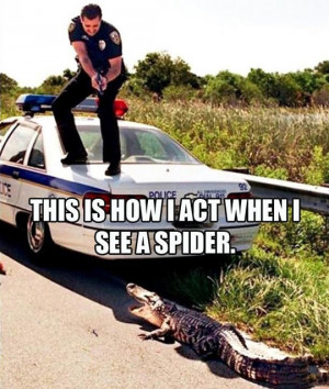 funny-picture-police-car-crocodile-scared-fire