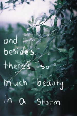 Beauty Storm #Quote