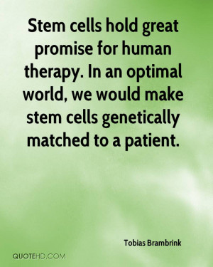 Stem cells hold great promise for human therapy. In an optimal world ...