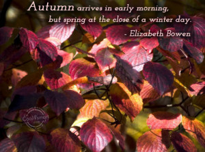 Autumn Quote: Autumn arrives in early morning, but spring... Autumn (2 ...
