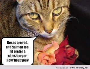 -valentines-day-funny-pictures-funny-kids-funny-photos-funny-quotes ...
