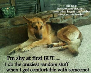 ... by Sonni Ann Gavin on German Shepherd: Quotes, Sayings & Signs,Ec